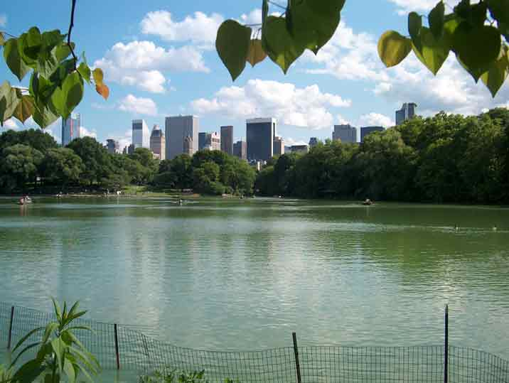 Nueva York (Estados Unidos) - Central Park
