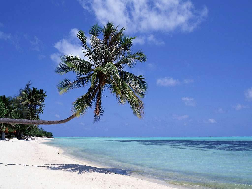 Maldivas -playa