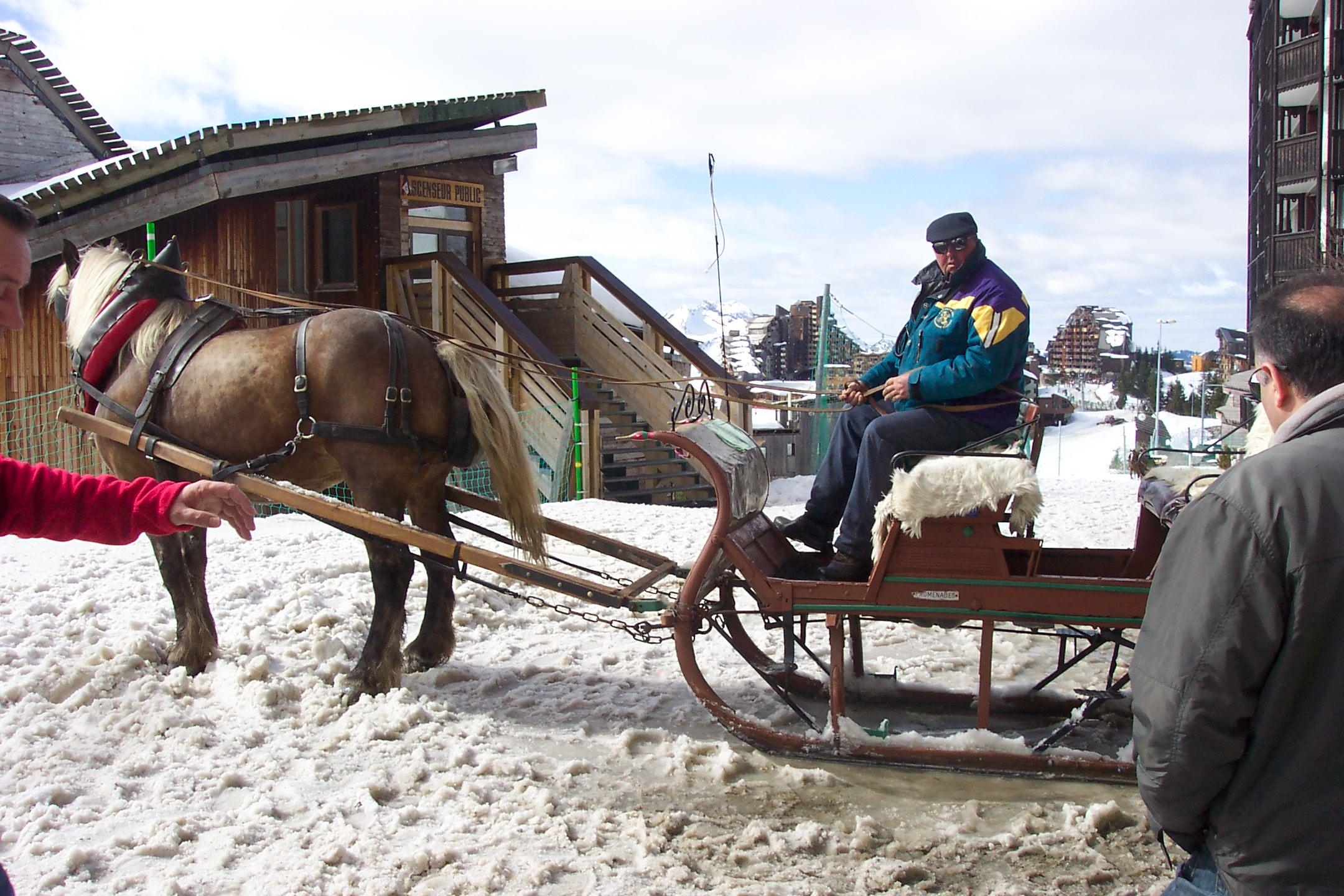 Avoriaz - Trineo tirado por caballos tipico de laestacion