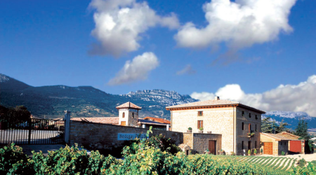 Bodegas Ostatu - Vista de bodega y viñedos
